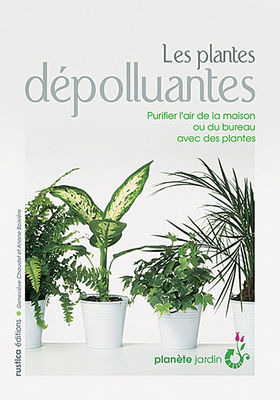 Les plantes d polluantes famille en pleine sant for Plantes depolluantes